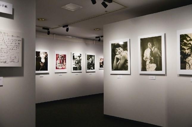 会場面積、展示物を拡大した完全版