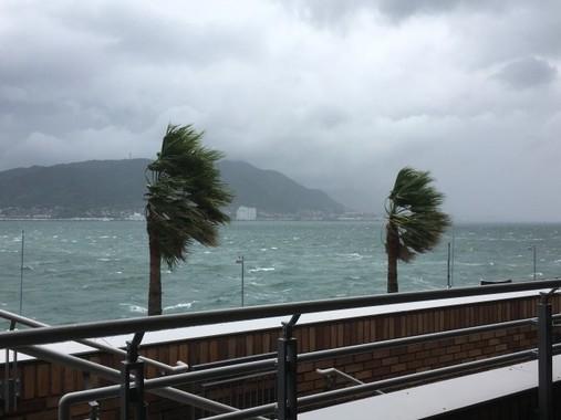 今年の台風は「土日にばかり来る」ってホント?