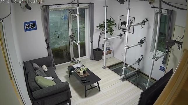 窓からの浸水も防ぐ耐水害住宅
