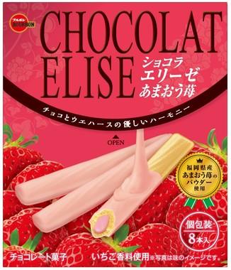 「ショコラエリーゼあまおう苺」