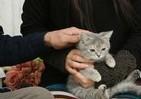 動物には興味なし? 前田エマさんと生き物たち、その絶妙な距離感
