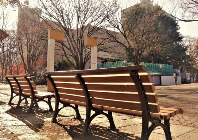 代々木公園から望むNHKホールと放送センター=冨永写す