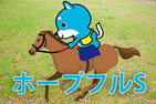 ■ホープフルS【カス丸の競馬GI大予想】     勝つのはコイントレイルか、ワーケアか?