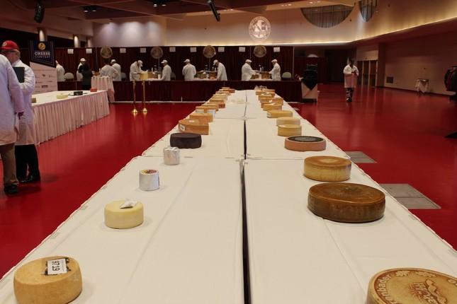 世界のチーズがずらりと並ぶ