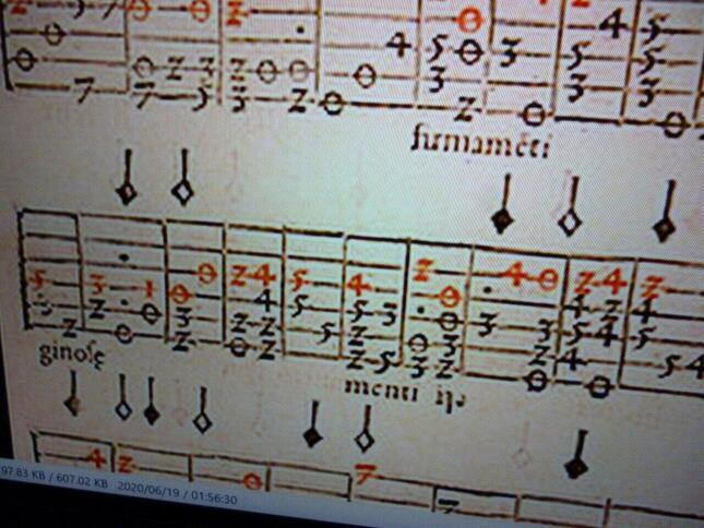 タブラチュア。楽器の演奏には便利だが、音楽そのものを記譜してはいない