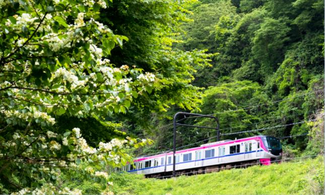 夏休み限定!新宿から高尾山までノンストップ「Mt.TAKAO号」運行