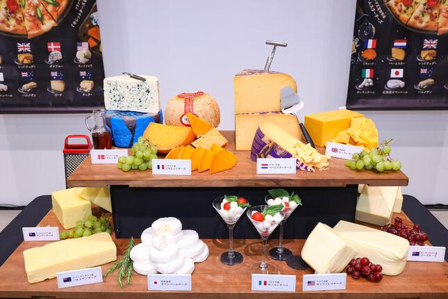 世界各国のチーズから10種類を厳選