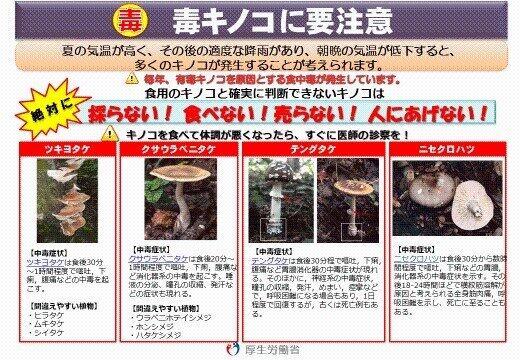 厚生労働省が掲示している、毒キノコによる食中毒に関する注意喚起(以下、厚生労働省公式サイトより)
