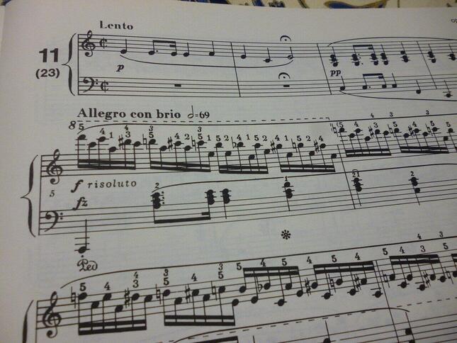 作曲当初はいきなり激しい木枯らしのようなパッセージから始まっていたが、後に友人のアドヴァイスによって、同じメロディーを大変スローなテンポで演奏する冒頭の4小節が書き加えられ、一層詩的な曲となった 練習曲 Op.25-11の楽譜