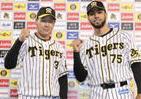 阪神とロッテ「ベストナインなし」でもリーグ2位 かぎ握るのは守護神!?