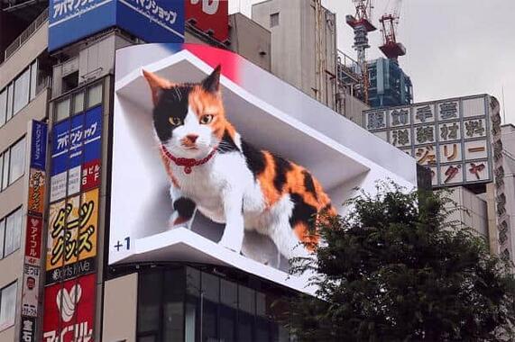 クロス新宿ビルの屋上に出現する3Dの巨大ネコ