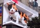 ビルの大型ビジョンから巨大ネコが飛び出しそう 新宿駅前に3Dサイネージ