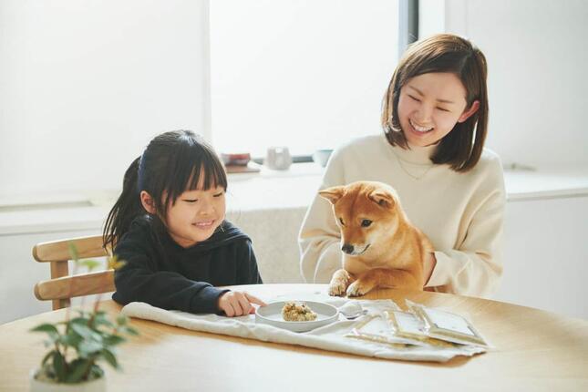 2年間常温保存可能なレトルトフード「愛犬のための非常食」