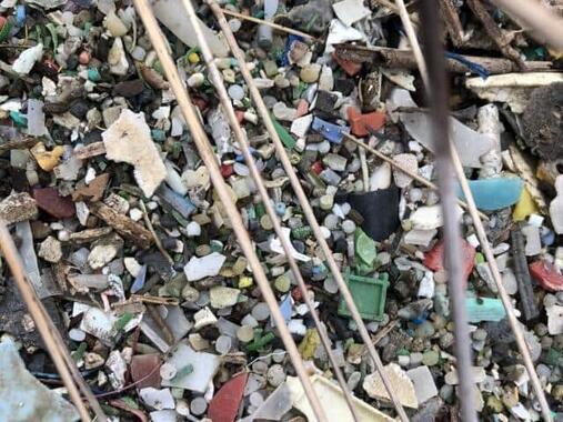 海洋のプラスチックごみが深刻化している