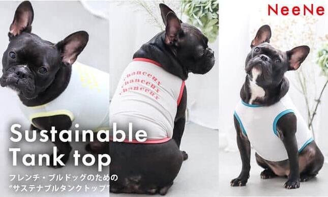 「残反」を活用したサステナブルなフレンチ・ブルドッグ犬専用服