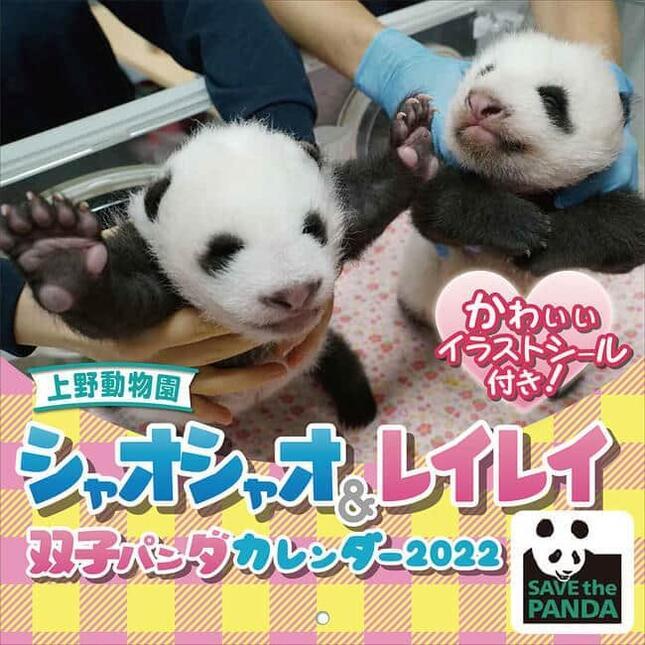 上野動物園で生まれたジャイアントパンダの双子の赤ちゃんがカレンダーに