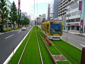 路面電車の軌道を緑化した(かごしま市電の事例)