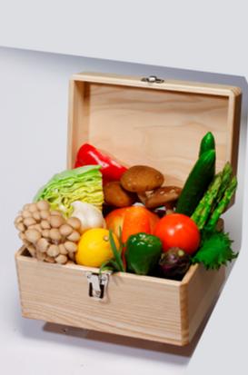企画展「地球は大きなくすり箱」では、「食材の魅力」を生かした調理法の紹介も予定されている
