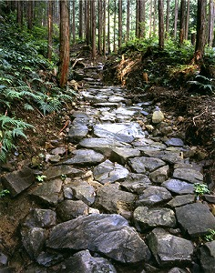 幽玄な空気が漂う伊勢路馬越峠 (C)Sanjiro Minamikawa