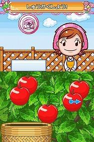 育てた後は収穫して楽しもう (C)2008 COOKING MAMA LIMITED/Published by TAITO