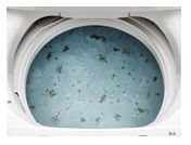 洗たく槽からはがれた汚れ(イメージ)