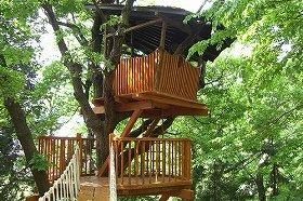 「茅ヶ崎市民の森」のツリーハウス  (c)Treehouse Creation