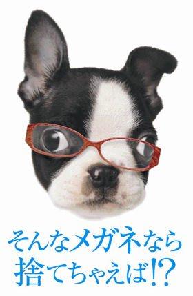 「そんなメガネなら捨てちゃえば!?」というネーミングは、2009年8月1日公開の映画「そんな彼なら捨てちゃえば?」にちなんでいる