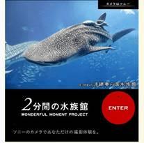 「2分間の水族館」ブログパーツ