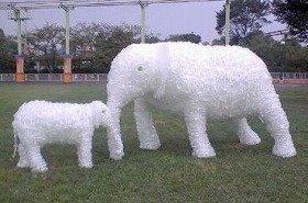 親ゾウは高さ2メートル30センチ。迫力あります!