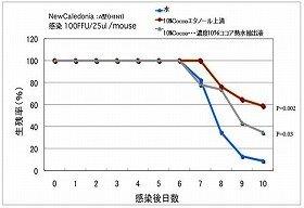 ココア分画成分投与によるインフルエンザウイルス感染マウスの生存率