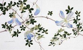画像は「秋のアケビ」(水彩・鉛筆)(C)Tamamura Toyoo