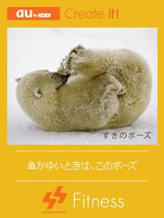 シロクマの愛らしいポーズに癒される