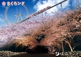 主な桜は、ソメイヨシノ・ヤマザクラ・シダレザクラなど