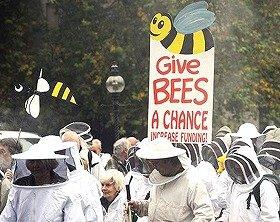 隠れ養蜂家が一丸となって合法化を獲得