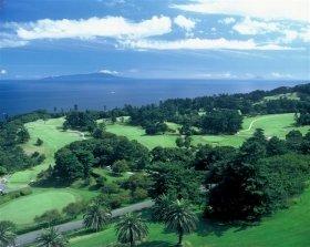 青い海、緑の芝