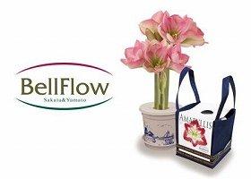 新ブランド『BellFlow』のロゴマーク(左)と商品(アマリリス『ポットアマリリス』)イメージ(右)