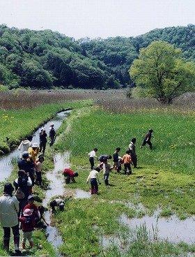 第1回プロジェクトで認定された福井県敦賀市「いきもの不思議の国・中池見湿地」