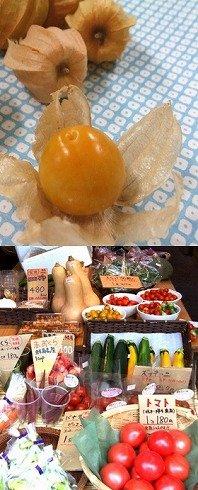(写真上)食用ほうずき。あまずっぱくてフシギな味です(写真下)こだわって作った野菜ばかり