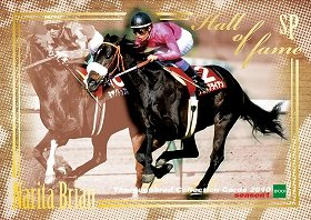 あの有名馬がカードに(画像は「ナリタブライアン」)
