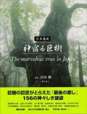 「日本遺産 神宿る巨樹」