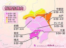写真は関東の桜開花傾向