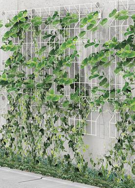 ウォールメッシュパネルで、緑化した壁づくり(写真は、壁付け仕様の施行例)