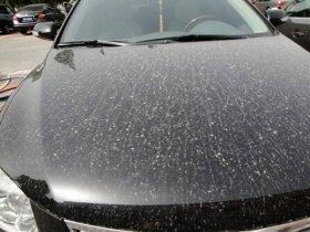 雨で汚れる車