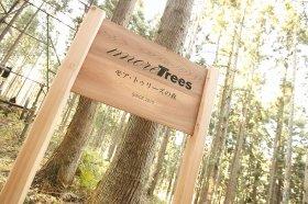 国内外の森づくりに取り組んでいる「more trees」