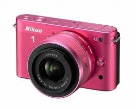 写真は、ピンク
