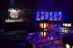 「ダイナースクラブ アートアクアリウム展2012」