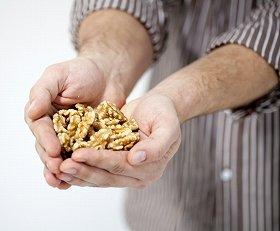 くるみは植物性オメガ3脂肪酸のアルファリノレン酸を豊富に含む
