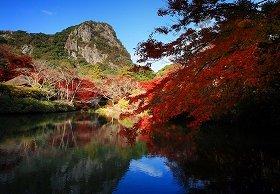池越しの紅葉も