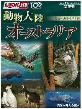 どの動物と出会う?