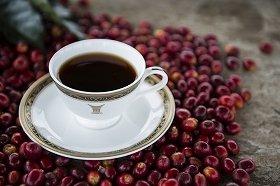 「トラジャ ブレンド」コーヒー